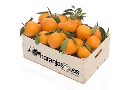 Naranjas 9 Kgs