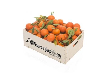 Mandarinas 5 Kgs