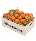 Mandarinas 10 Kgs