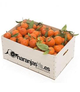 Mandarinas 20 Kgs
