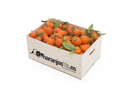 Mandarinas 19 Kgs