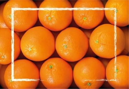 Naranjas de mesa 9 Kgs
