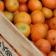 Saber elegir bien: diferencia entre mandarina y clementina