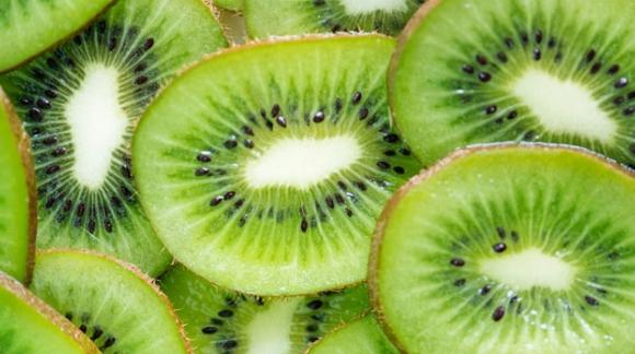 Origen del kiwi y su cultivo